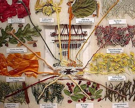 12-plant dye chart for Navajo rugs